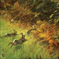Servietten 33x33 cm - Running Rabbits