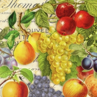 Servietten 33x33 cm - Autumn Fruit