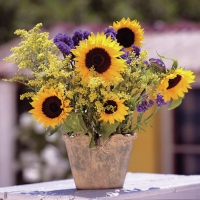 Servietten 33x33 cm - Sunflower Bouquet