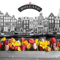 Servietten 33x33 cm - Canal Flowers