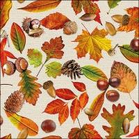 Servietten 33x33 cm - Autumn Festival