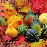 Servietten 33x33 cm - Pumpkins And Leaves