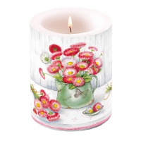 Kerze Candle Big Bellis In Pot