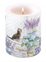 Dekorkerze Candle Big Kitten