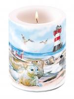 Dekorkerze Candle Big Seals On The Beach
