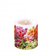 Dekorkerze klein - Tulips