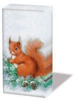 Taschentücher - Squirrel On Tree