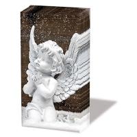 Taschentücher - Angel