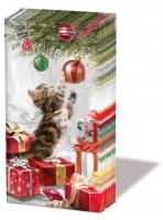 Taschentücher - Kätzchen und Kugel