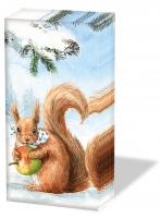 Taschentücher - Eichhörnchen Liebe
