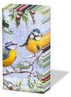 Taschentücher - Zwitschernde Vögel