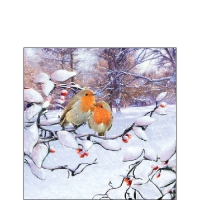 Servietten 25x25 cm - Robins On Branch