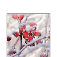 Servietten 25x25 cm - Frozen Rosehips
