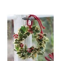 Servietten 25x25 cm - Ilex Wreath