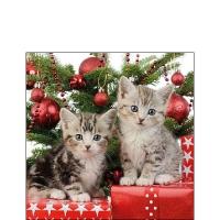Servietten 25x25 cm - Christmas Kitten