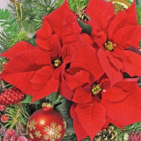 Servietten 33x33 cm - Roter Weihnachtsstern