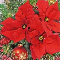 Servietten 33x33 cm - Red Poinsettia
