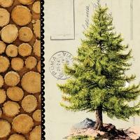 Lunch Servietten Pine Tree