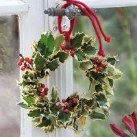 Servietten 33x33 cm - Ilex Wreath