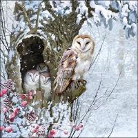 Servietten 33x33 cm - Barn Owl