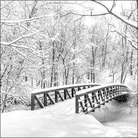 Servietten 33x33 cm - Snow Bridge