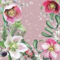 Servietten 33x33 cm - Helleborus Orientalis Rose