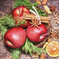 Servietten 33x33 cm - Winter Apples