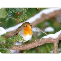 Tischsets - Robin In Tree