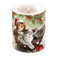Dekorkerze - Katzen im Korb