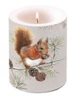 Dekorkerze - Squirrel In Winter