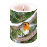 Dekorkerze - Robin In Tree