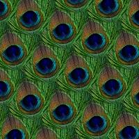 Servietten 33x33 cm - Peacock, grün