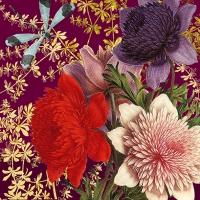 Servietten 33x33 cm - Madame Bovary, rubin