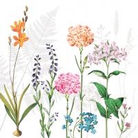Servietten 25x25 cm - Botanica