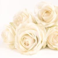 Servietten 33x33 cm - Elegant Rose