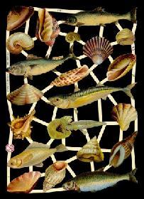 Glanzbilder - Fische