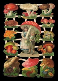 Glanzbilder mit Silber-Glimmer - 12 Bilder mit Pilzen