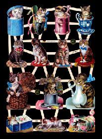Glanzbilder - Katzen