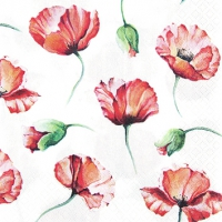 Servietten 25x25 cm - Poppy Drawing