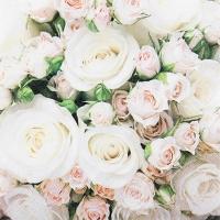 Servietten 25x25 cm - Romantic Roses