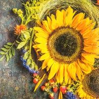 Servietten 25x25 cm - Sunny Autumn