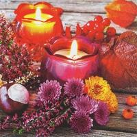 Servietten 25x25 cm - Autumn Lantern