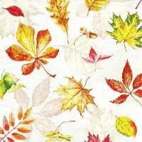 Servietten 25x25 cm - Scattered Foliage