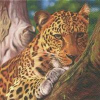 Servietten 33x33 cm - Leopard