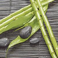 Lunch Servietten Bamboo Wellness