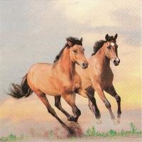 Servietten 33x33 cm - Wild Horses