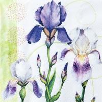 Servietten 33x33 cm - Iris