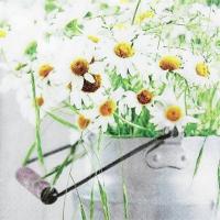 Servietten 33x33 cm - Ein Haufen Gänseblümchen