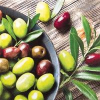Servietten 33x33 cm - Pure Olives