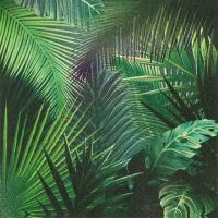 Servietten 33x33 cm - Rain Forest